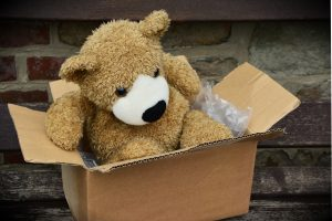 A bear in a box.
