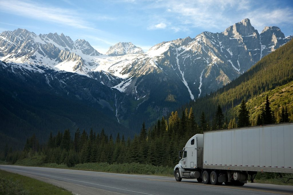 Choose professional moving company for a move during a snowstorm