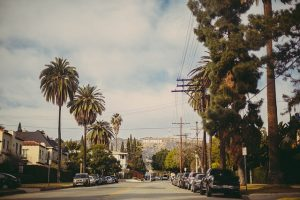 Enjoy the street with palm trees with interstate movers California.