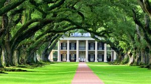 Interstate movers Louisiana are moving you to the state of trees and mansions.