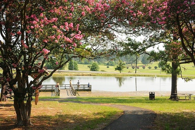 Park with trees, flowers, benches and a lake.