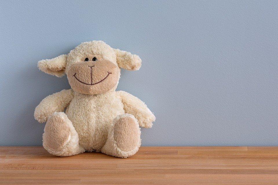 A stuffed toy.