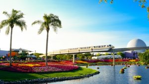Electric train passing trough beautiful parks