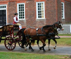 A carriage, spending the holidays in Virginia at Colonial Williamsburg