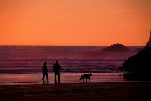 Elderly people retire to Florida to enjoy sunset on the beach