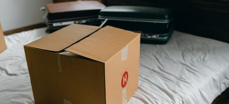 A box and suitcases on a bed