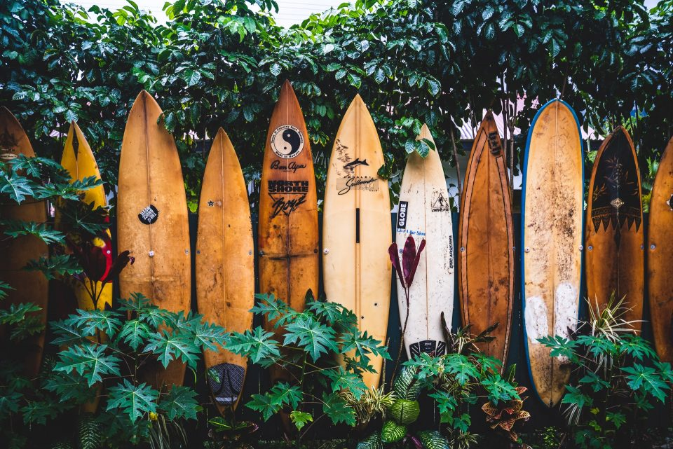 Fence made of surfing boards