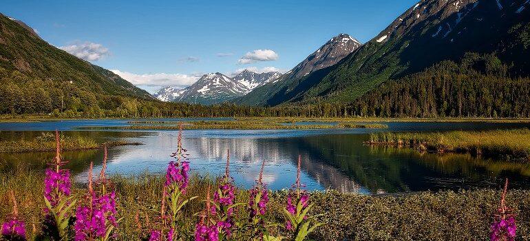Chugach National Forest , Alaska