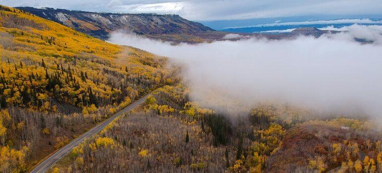 A road in Colorado.