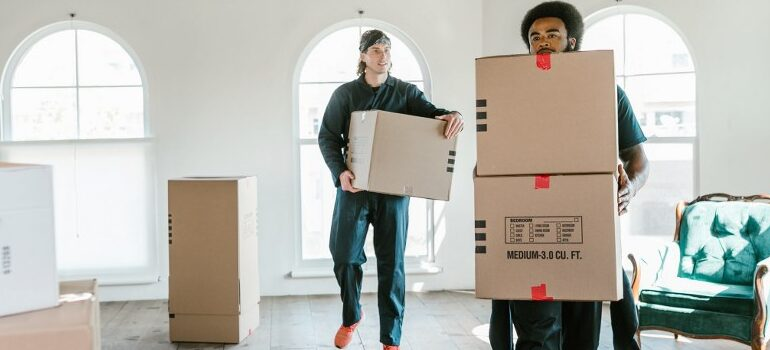 movers carrying cardboard boxes