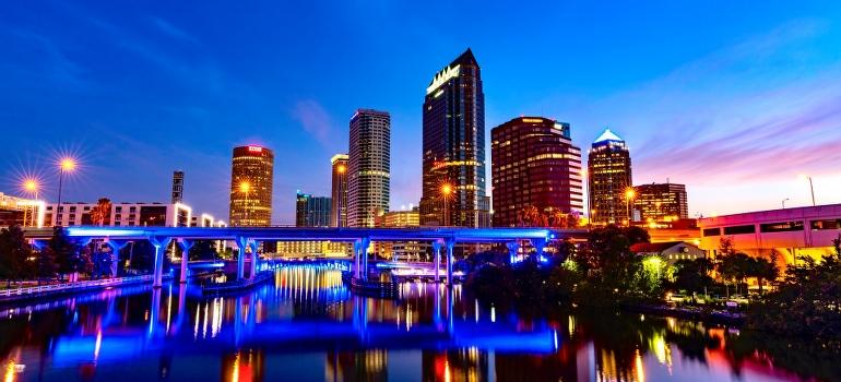 Tampa night skyline