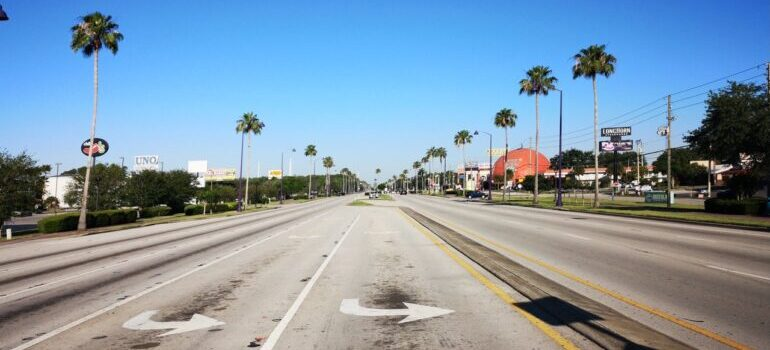 View of the street, palms and some houses in Florida.